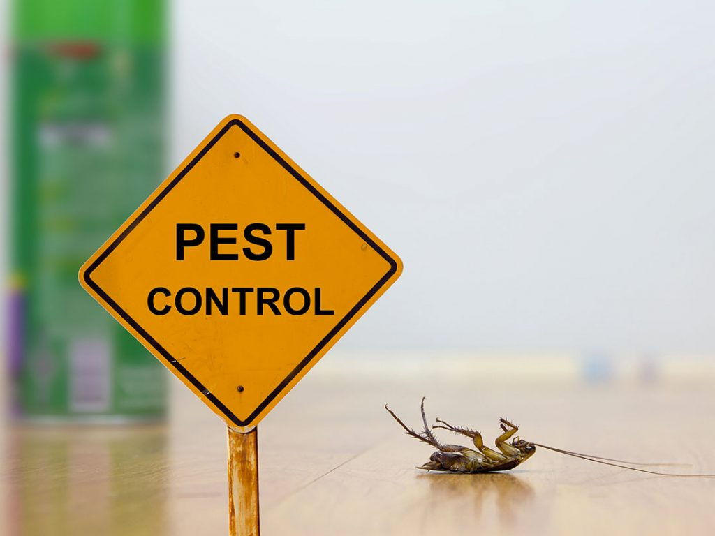 What is Merlin's General Home Pest Control Service Plan?